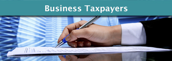Business Taxpayers
