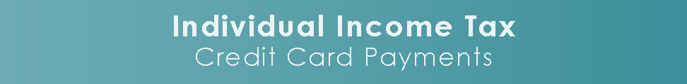 Individual Income Tax Credit Card Payments